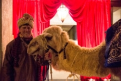 SHINE-WING_PROP-STORE_ENC_MOROCCAN_CAMEL-103-250x167