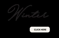 Website Banner Corporate Winter 250x161 - Corporate Events